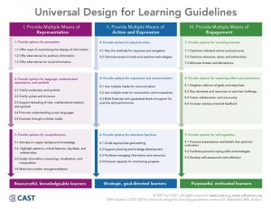 a picture of the universal design for learning guidelines